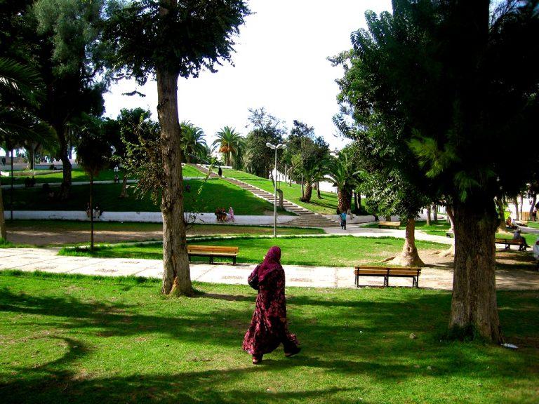 Descubre qué ver y hacer en Tánger en los Jardines de Mendoubia