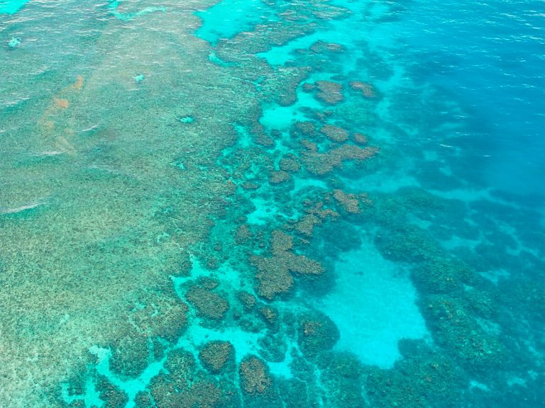 Gran Barrera Coral de Australia