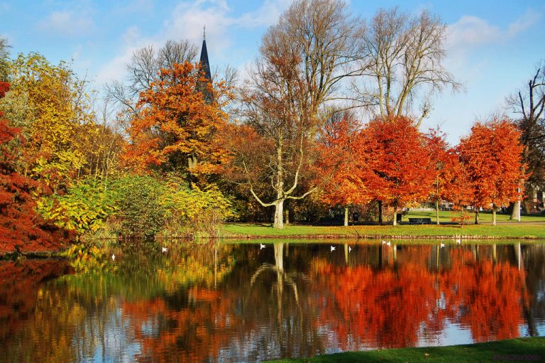 Qué ver y qué hacer en Vondelpark, Amsterdam