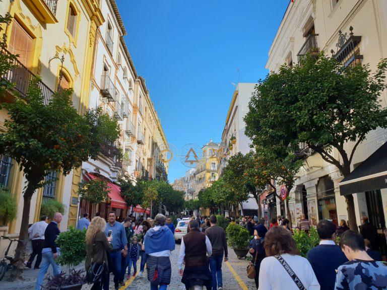 Barrio Santa Cruz, qué ver y qué hacer en Sevilla